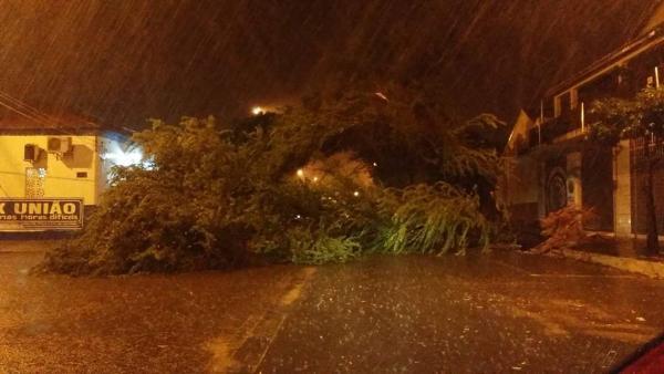 Forte chuva causa estragos e deixa ruas alagadas em Parnaíba